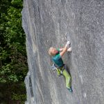 2002 To Bolt or Not to Be